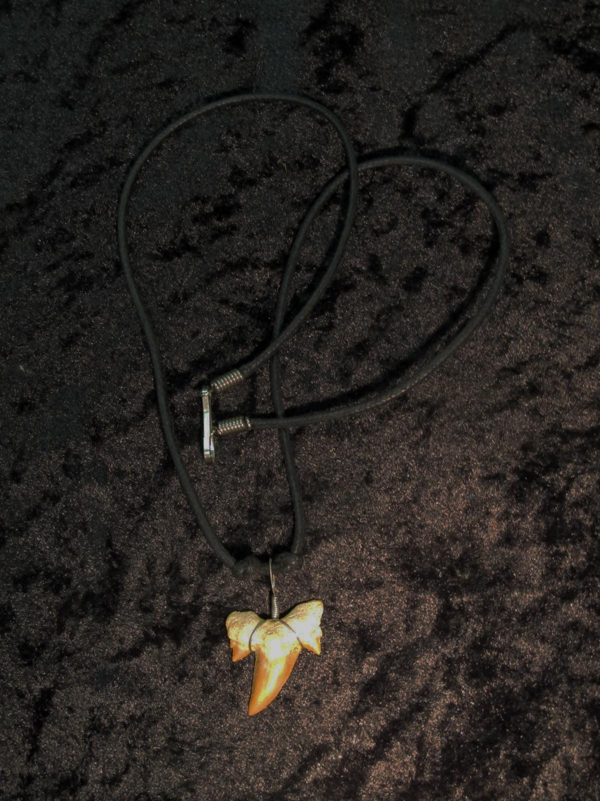 Wearing crystals: shark tooth necklace