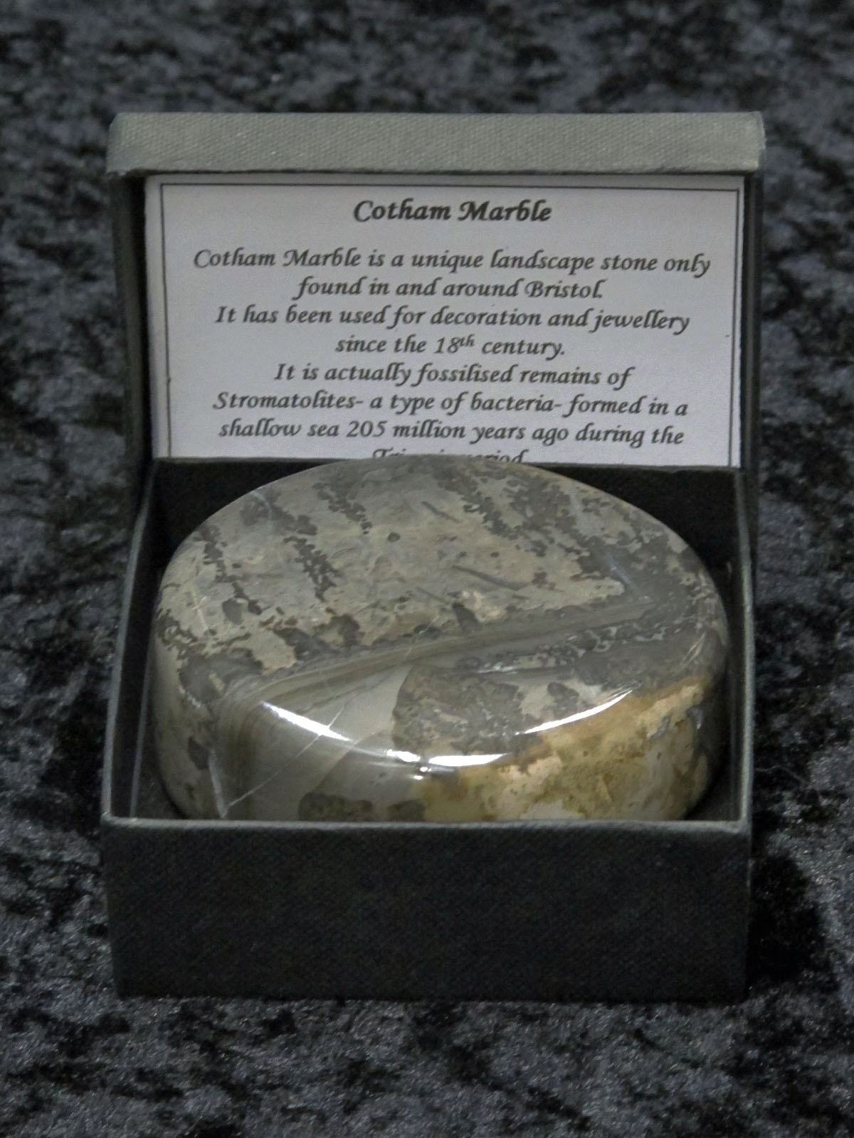 Collector's Guide: Cotham Marble
