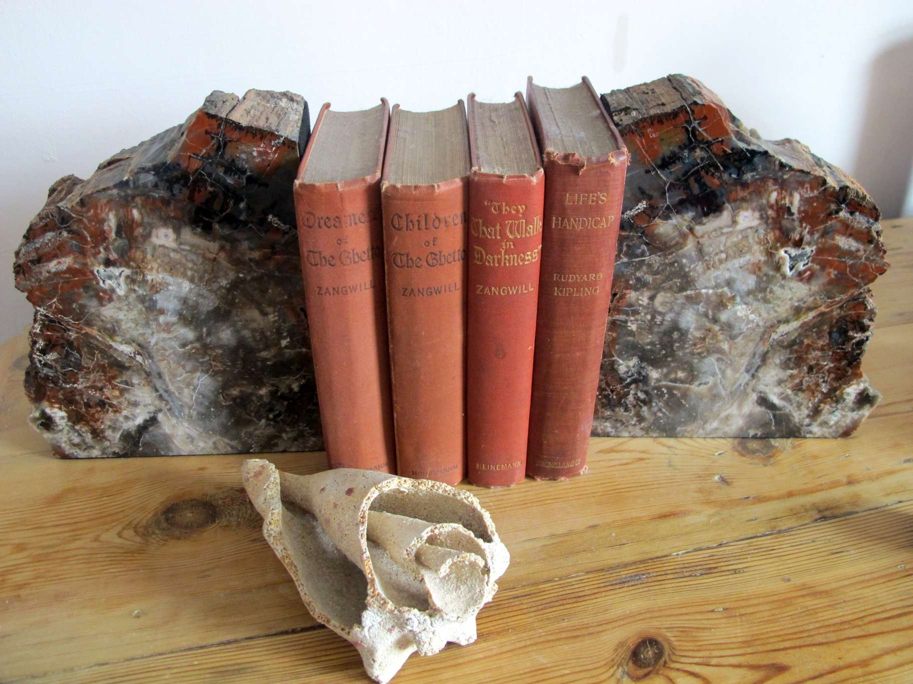 Charles Darwin Fossil Wood Bookends