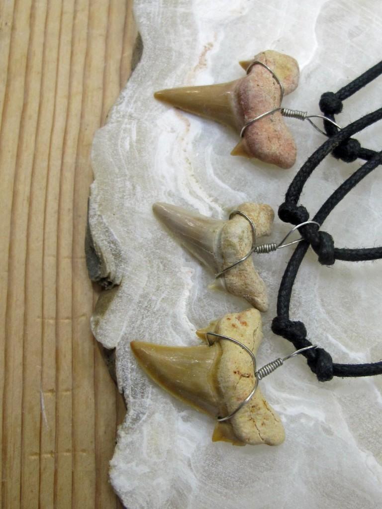 shark teeth necklaces