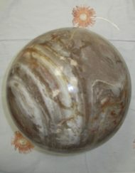 giant fossil wood sphere