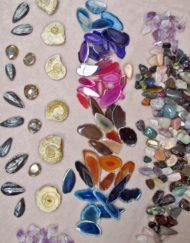 school fundraising pocket money fossil and crystal