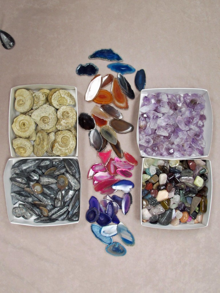 school fundraising fossil and crystal stall