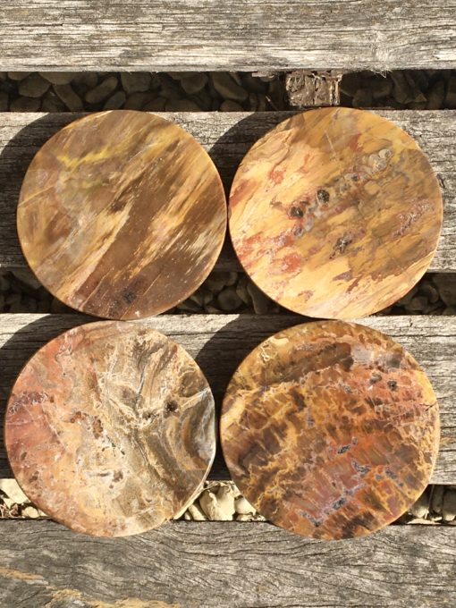 Fossil Wood Coasters Set of 4