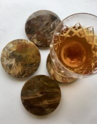 Fossil Wood Coasters