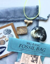 Fossil Christmas Eve Bag