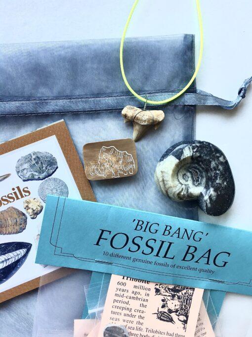 Fossil Christmas Eve Bag