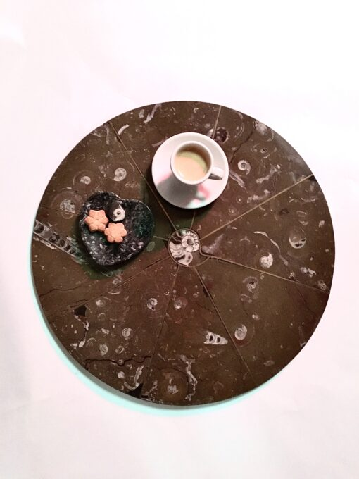 Moroccan Fossil Coffee Table Top