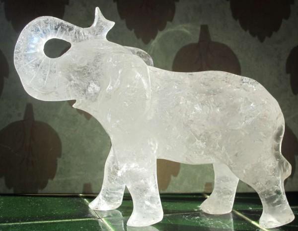 Fossils? Or A Crystal Elephant?