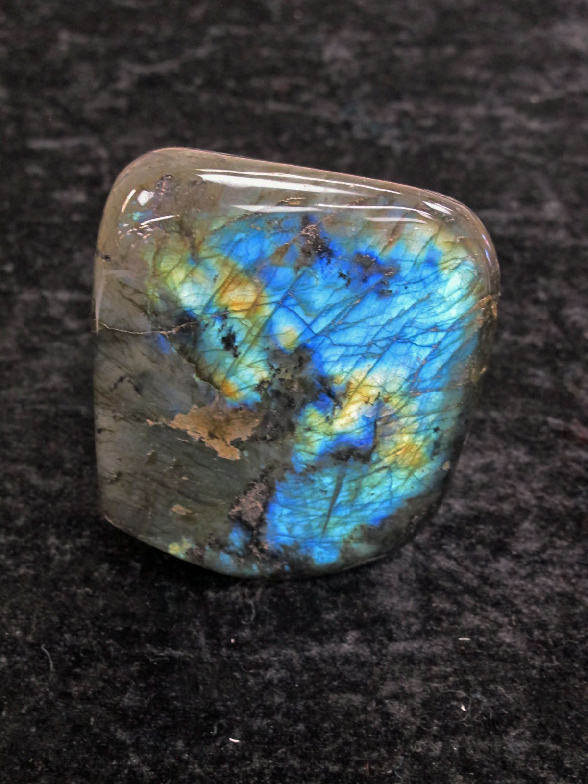 Labradorite Fossil and crystal shop talisman?