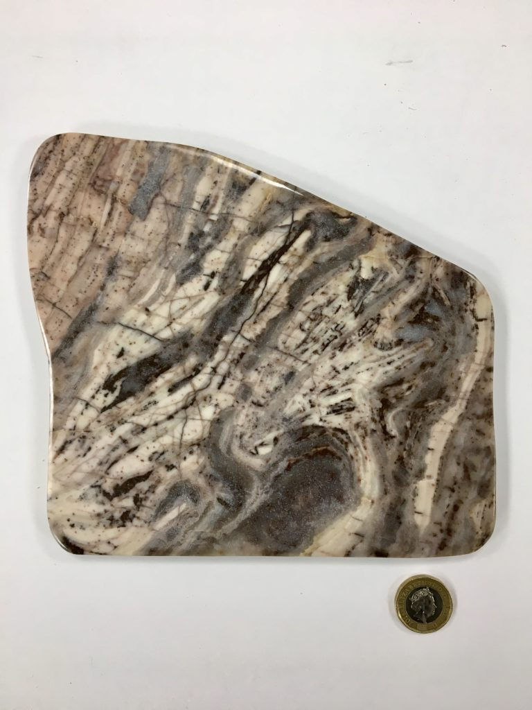 Stromatolite Slice